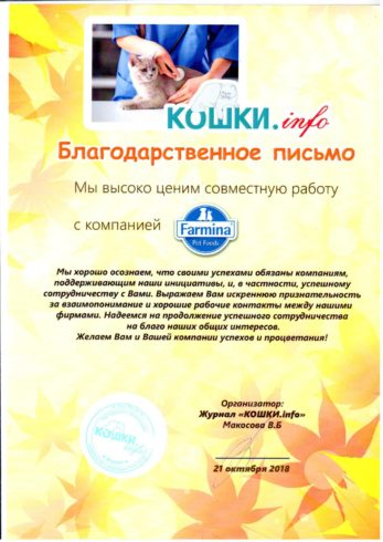 Благодарность КОШКИ info 2